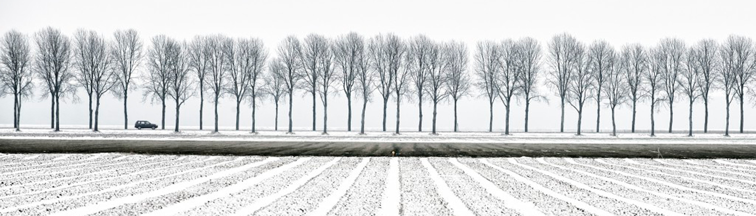 Agrarisch land in de winter